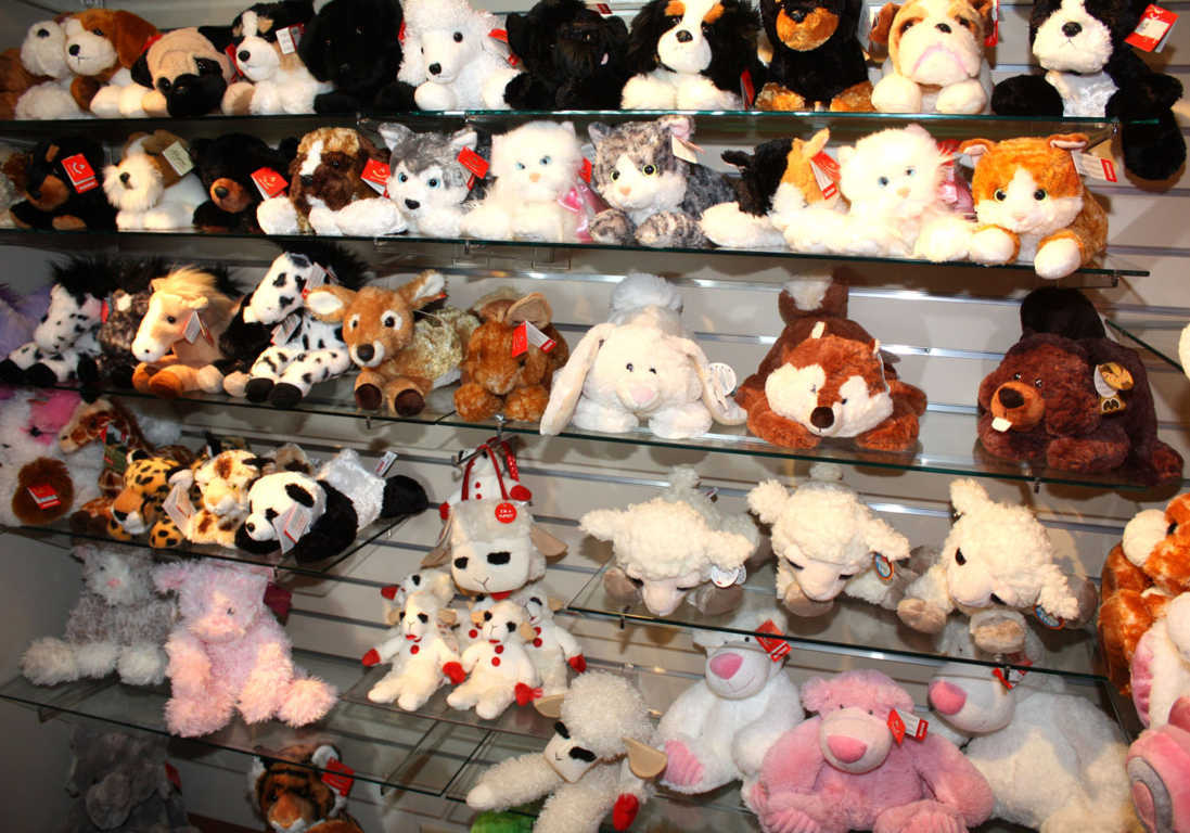 Plush Toys of Cats, Dogs, and Other Animals Available at Mon General Hospital Gift Shop