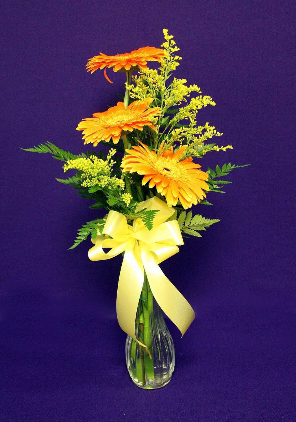 Orange Flower with Yellow Ribbon Flower Arrangement from Mon General Hospital Gift Shop